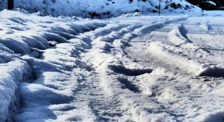 DINOB-Winter